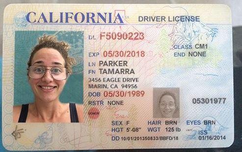 Buy Genuine Drivers License